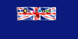 ok school ustka logo