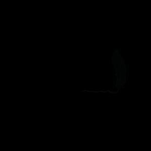 lesson corner warszawa logo